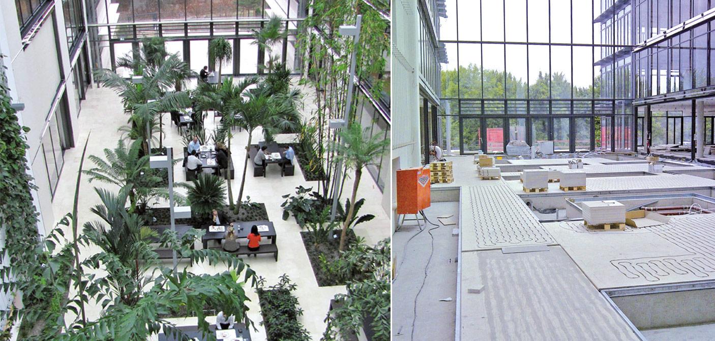 Baader bank dichtes zuhause f r viele tropische gew chse for Innenraum pflanzen