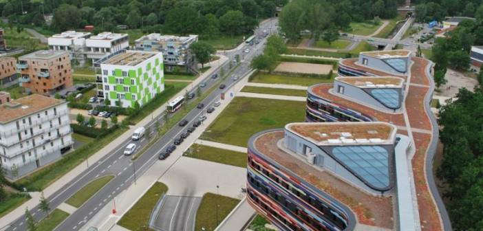 Vernetzung von Gründachbiotopen in Hamburg – Behörde fürStadtentwicklung und Umwelt und umliegende Gebäude. - © Optigrün, Mann