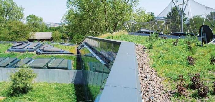 Die unregelmäßigen schrägen Dachkanten schaffen asymmetrisch geformte Dachbereiche. - © Garten-Moser
