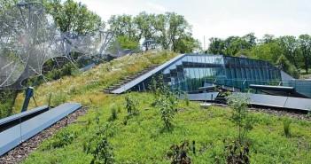 Über 1000 Stauden/Gräser und Gehölze unterschiedlicher Charakteristik schaffen eine strukturierte Dachlandschaft. - © Garten-Moser