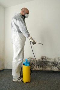 Schimmel, wie auch alle anderen Verunreinigungen müssen mit einem Desinfektionsmittel behandelt werden.