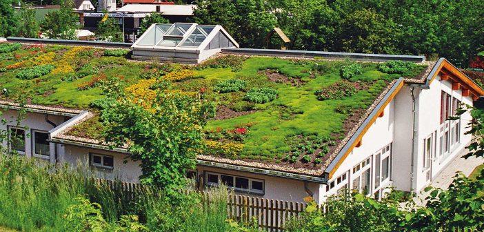 Von steil bis flach – es schützt das Dach